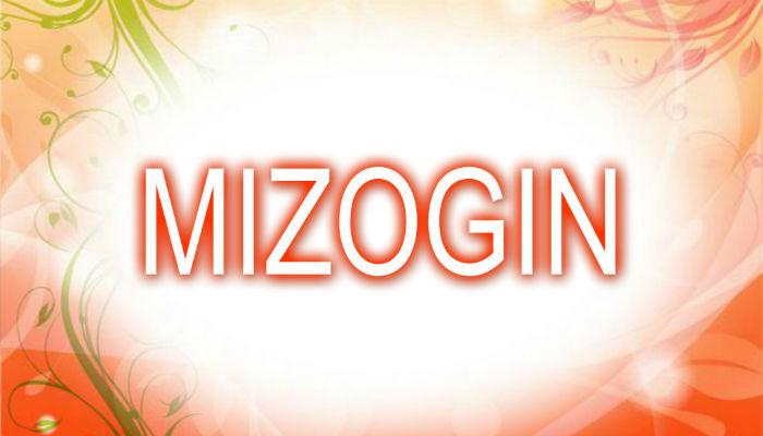 Mizogin