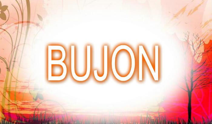 Bujon