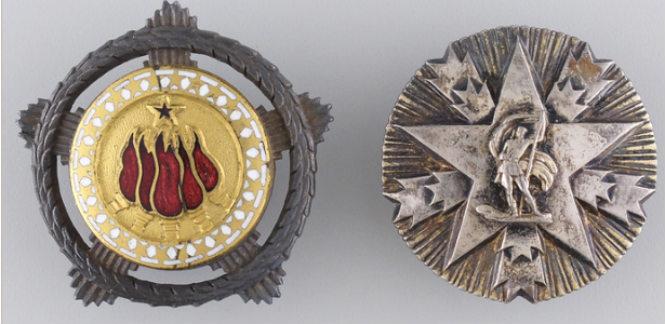 insignije